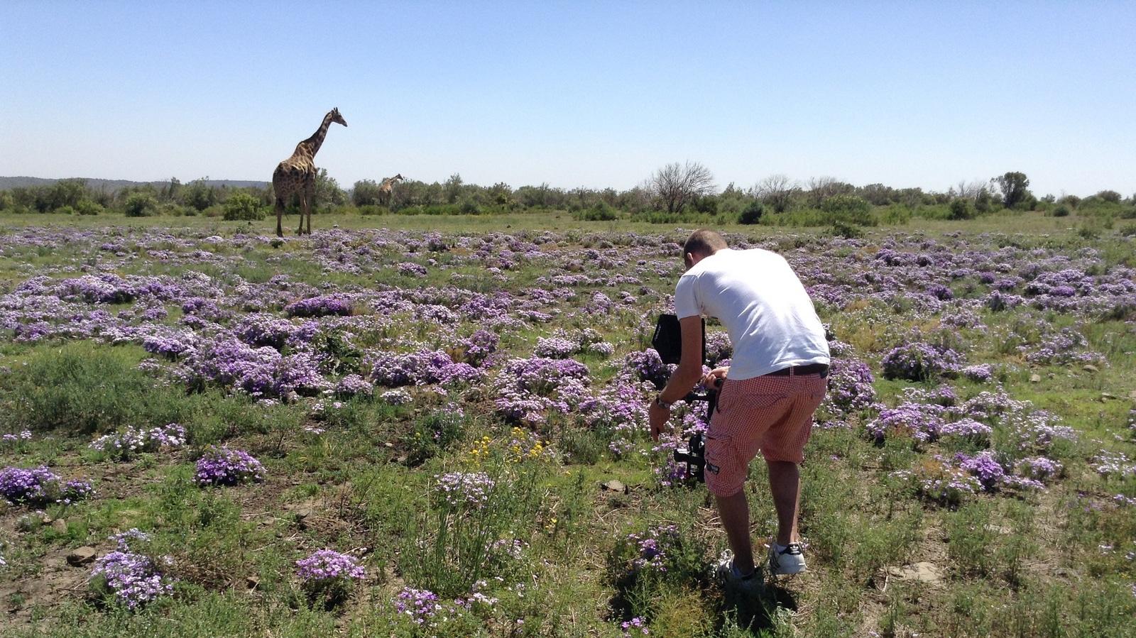 Ronin safari africa